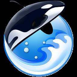 orca orca