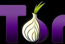 tor 220x150 - Ganz einfach anonym surfen mit dem Tor-Browser