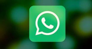 whatsapp-kontakt-senden-310x165
