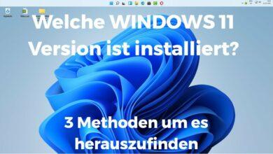 Welche Windows 11 Version habe ich installiert